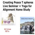 Creating Peace T spheres Technique Live Seminar + Yoga for Alignment Home Study - 12 CE Hours