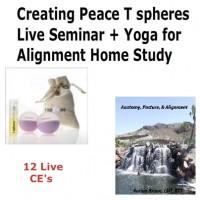 Creating-Peace-with-Your-hands-Live-Seminar-and-Yoga-Alignment
