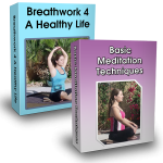 The Ultimate Relaxation Technique Course-Breathwork and Meditation (12 CEH)