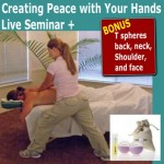 Creating Peace with T Spheres Technique Live Seminar - (6 Live CE Hours)