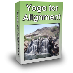 yoga-for-alignment